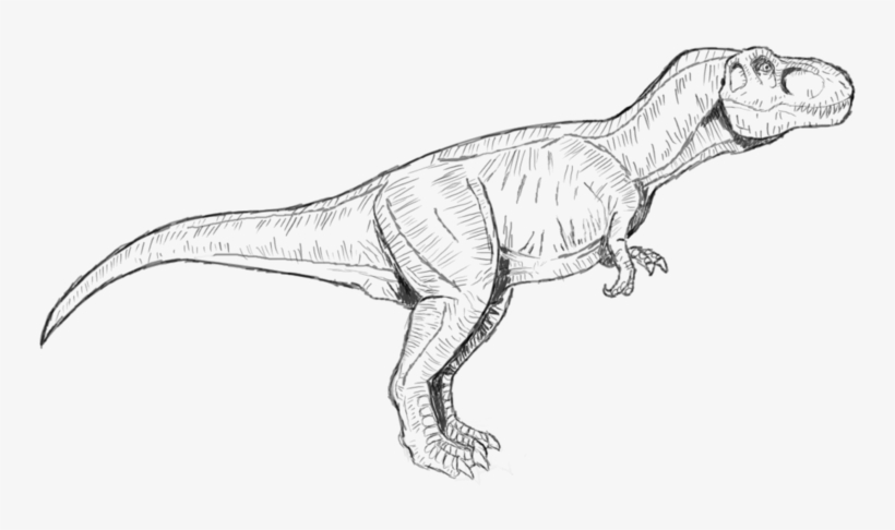 jurassic park t rex coloring pages to