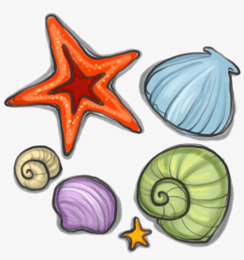 Svg Royalty Free Library Seashell Starfish Snail Clip - Seashell, transparent png #456719