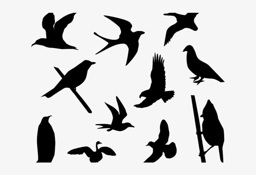 Lovebird Clipart Small Bird - Free Bird Silhouette Vector