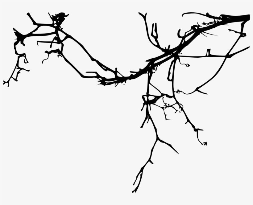 Simple Tree Branch - Tree Branch Silhouette Png, transparent png #4527975