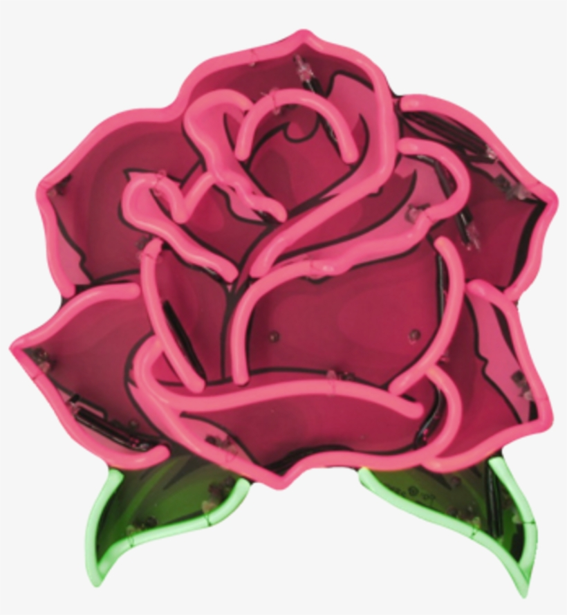 Roses Rosa Flor Flower Led Tumblr Neon Red Neon Aesthetic