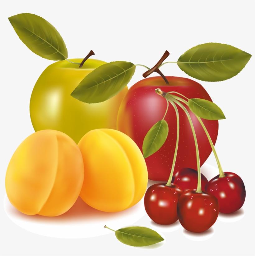 Apples - Cherries Apricots Apples Fruit Mugs, transparent png #4541391