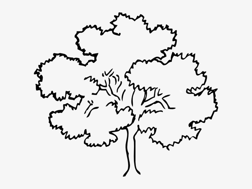 Family Reunion Tree Clip Art Free Transparent Png Download Pngkey
