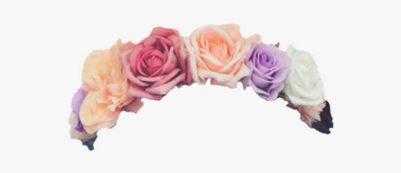 Daisy Flower Crown Tumblr Transparent - Flower Crown Transparent Overlay, transparent png #468413