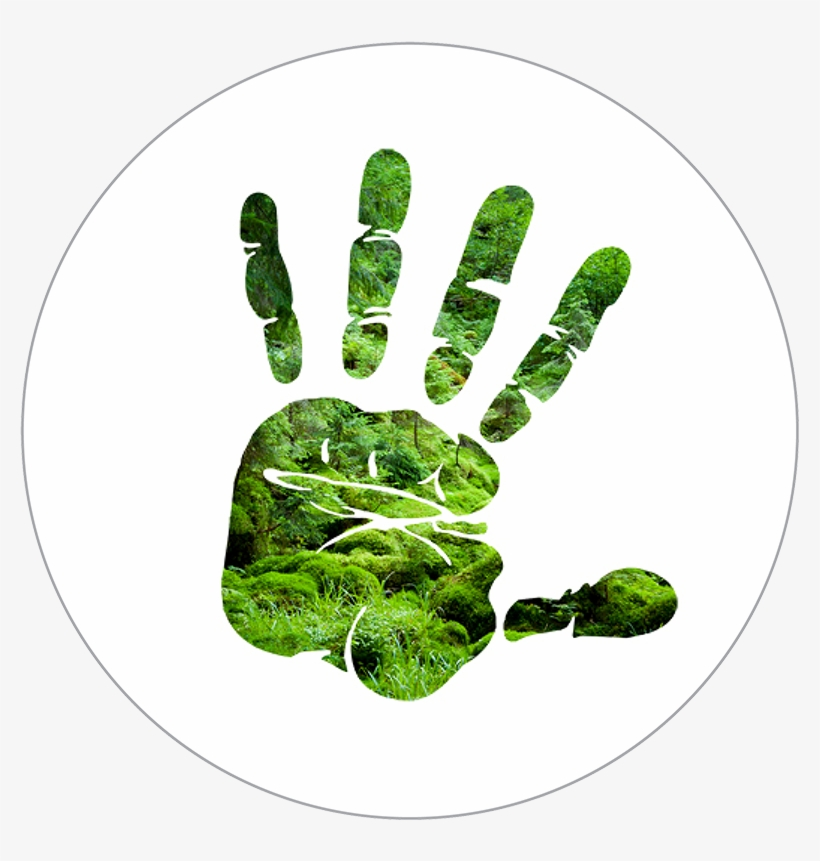 Silhouette Of Hand Over Forest Scene - Stop Hand Sign Png, transparent png #4643124