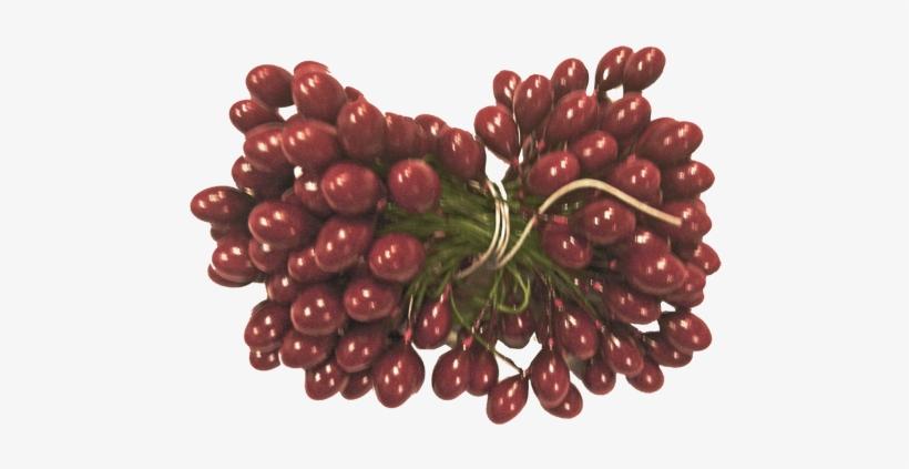 Burgundy Holly Berries 5 Gross - Seedless Fruit, transparent png #471284
