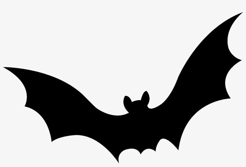 Bat Swarm High Resolution New Wallpaper - Flying Bats Gif High Resolution, transparent png #4777994