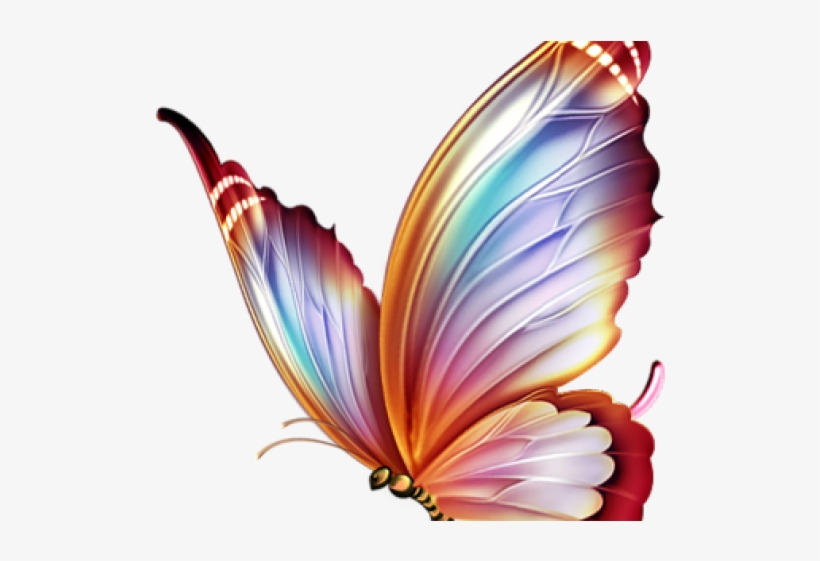 Butterfly Tattoo Designs Png Transparent Images - Colour Pencil Drawings Of Butterfly, transparent png #4791841