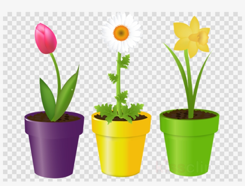 Download Flowers In A Pot Clipart Flowerpot Stock Photography - Flower In The Pot, transparent png #4796961