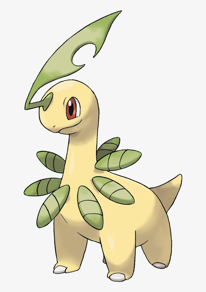 Bayleef Grass Type Pokemon I Choose You Pokemon Pictures