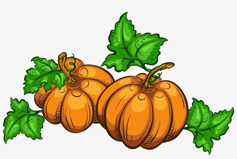 Jpg Free Library Transparent Pumpkins Png Clipart Picture - Pumpkin Clip Art, transparent png #485501