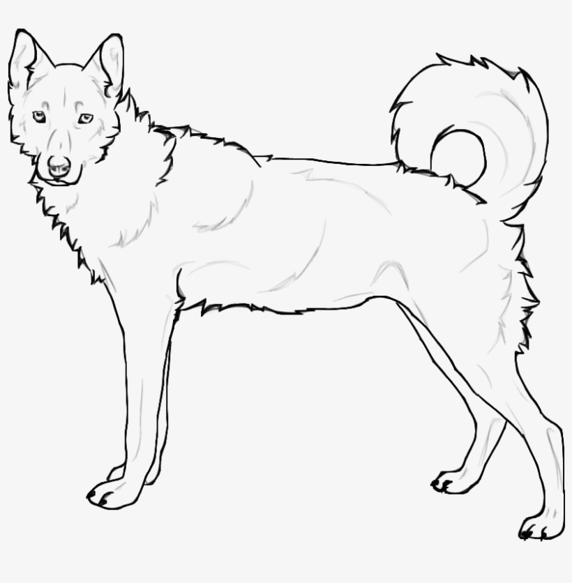 Coloring Pages Of Husky Dogs Siberian Husky Huskies Coloring Pages