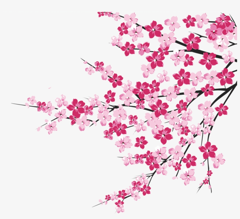 64 Cherry Blossom Tree Branch Cliparts For Your Inspiration - Cherry Blossom Pink Png, transparent png #4831418