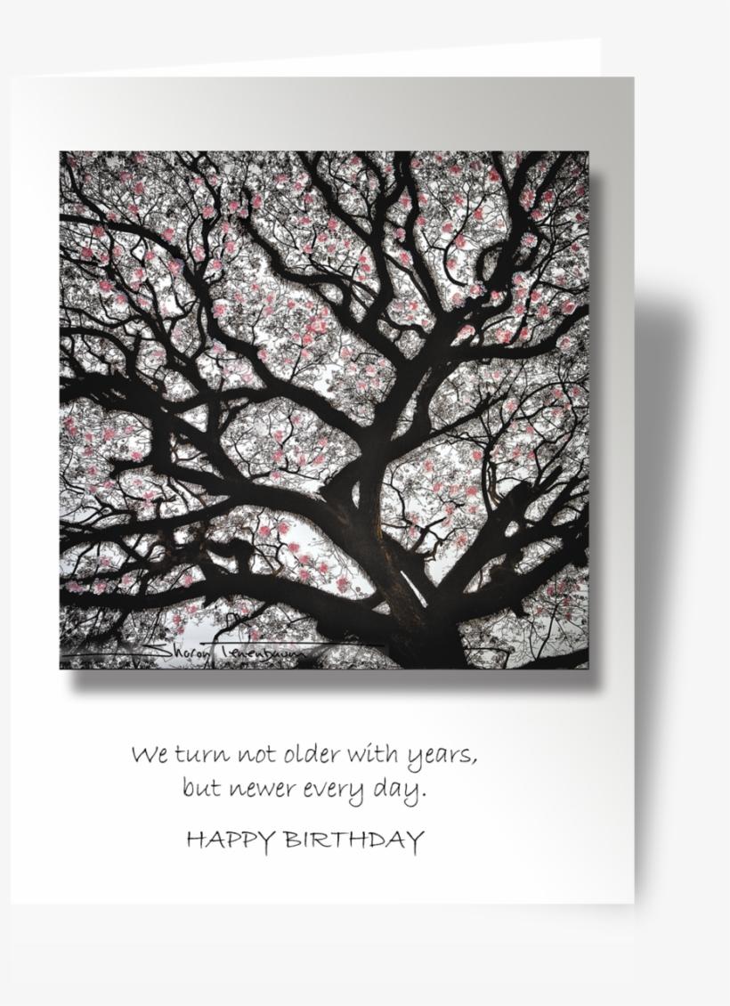 Cp058 Cherry Blossom Tree - Cherry Blossom, transparent png #4831482