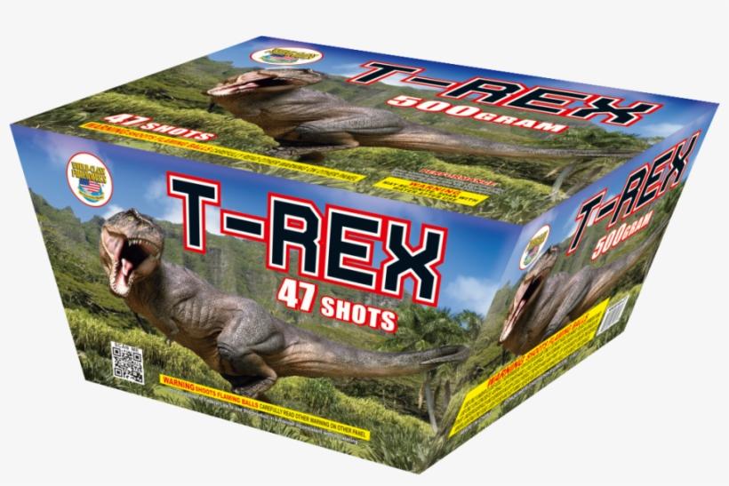 T-rex - Dinosauri. Quaderni Per Sapere Di Più. Con Adesivi, transparent png #4870246