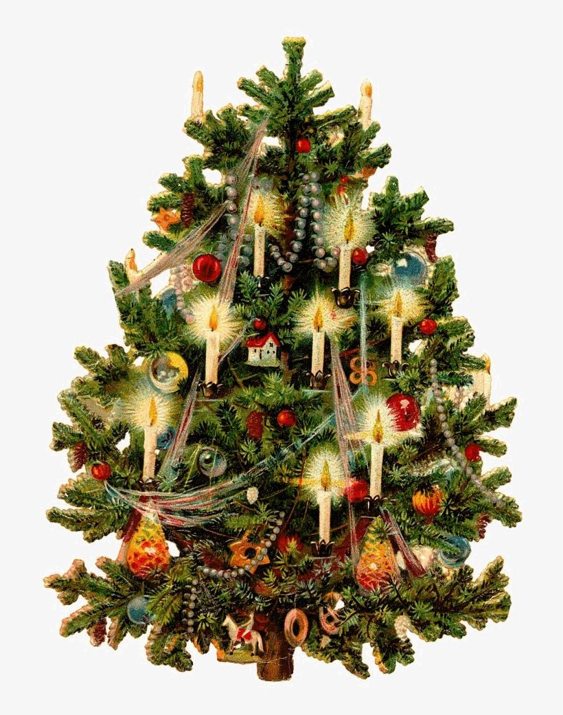 Tubes Gifs Sapins De Noël Victorian Christmas Tree Free