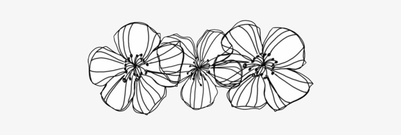 Flowers Overlay And Transparent Image Transparent Black And