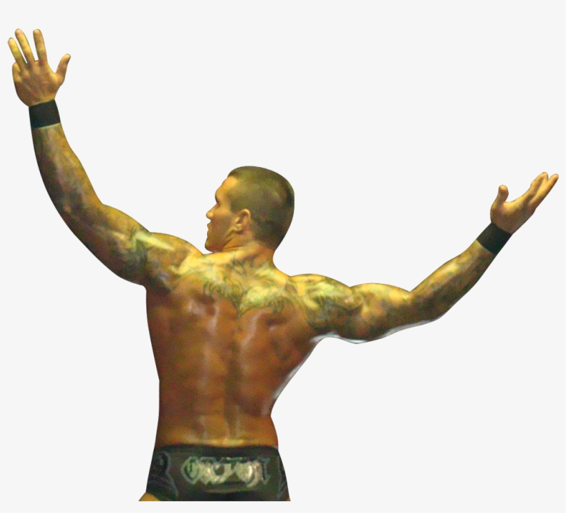Randy Orton 2014 Png Download - Back Pictures Of Randy Orton, transparent png #494520