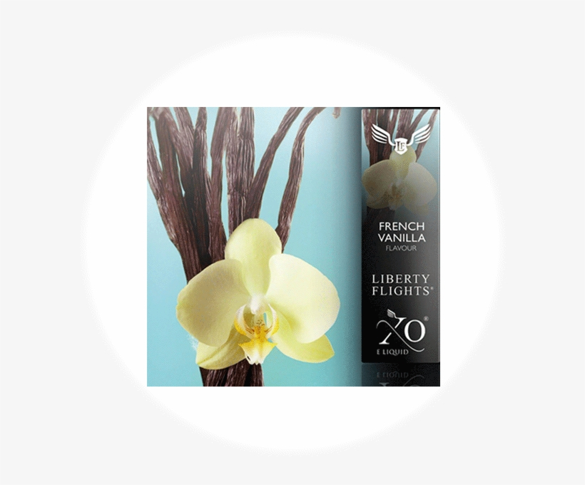 Xo Liberty Flights - Desert Essence - Body Wash Spicy Vanilla Chai - 8 Oz., transparent png #4911416