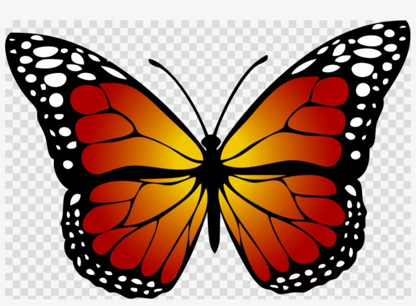 Yellow Butterfly Clipart Butterfly Insect Clip Art Kupu Kupu Hitam Putih Free Transparent Png Download Pngkey
