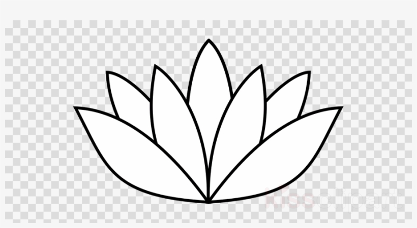 White Lotus Flower Drawing Clipart Drawing Clip Art - Lotus Flower Drawing, transparent png #4962675
