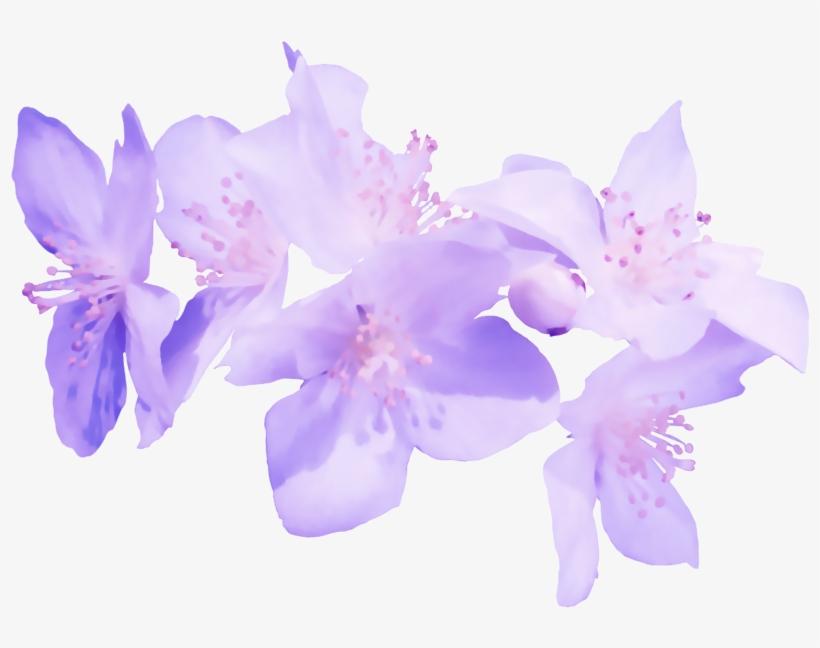 The Images Flores Moradas En Png Transparente Free Transparent