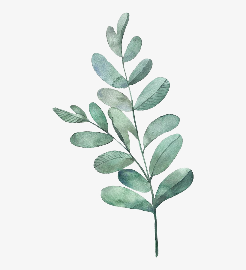 Tealdividerpngg - Watercolour Green Leaves Png, transparent png #50032