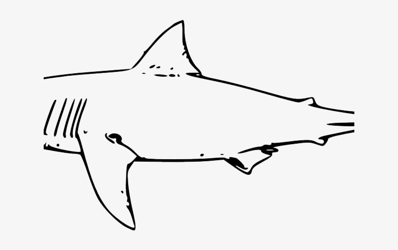 Shark Clipart Watercolor - Great White Shark Clip Art, transparent png #52056