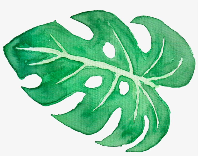 Tropical Leaves On Behance Graphic Library - Watercolor Tropical Leaves Png, transparent png #52898