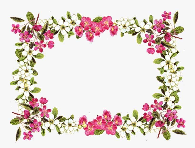 Free Printable Clip Art Borders Digital Flower - Flower Border Png, transparent png #53229