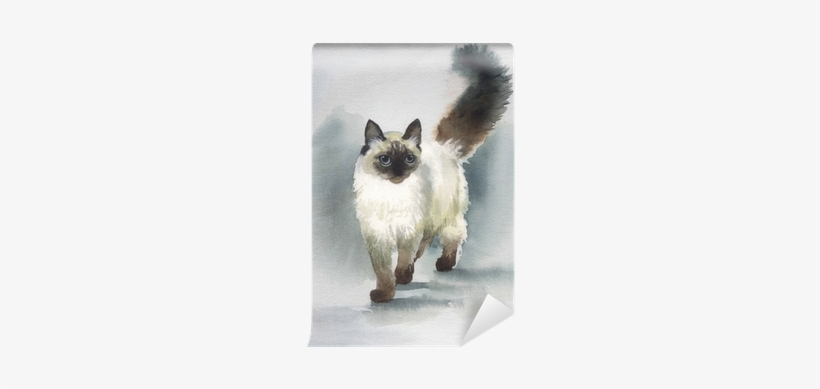 Watercolor Animal Collection - Iskhan Cat Grain Free Kitten 2.5 Kg, transparent png #53814