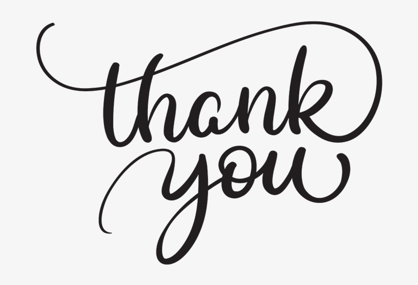 Thank You Script Thank You Text Vector Free Transparent Png