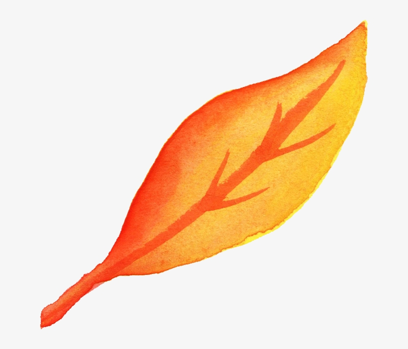 Free Download - Leaf Png Watercolor Fall, transparent png #56236