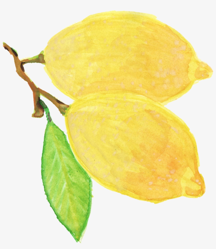 Free Download - Png Watercolor Yellow Flower, transparent png #57963
