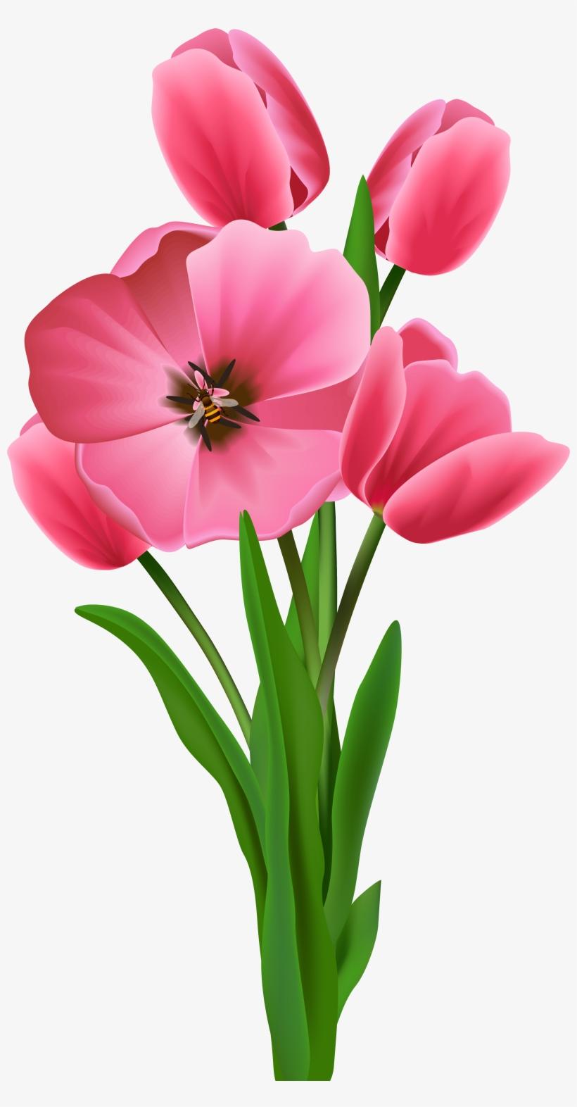 Transparent Image Tulipany Pinterest - Tree Flower Clipart Png, transparent png #501752