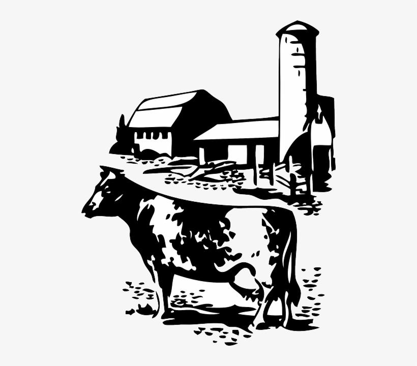 Barn Farm Cow Dairy Animal Animals Silhouette