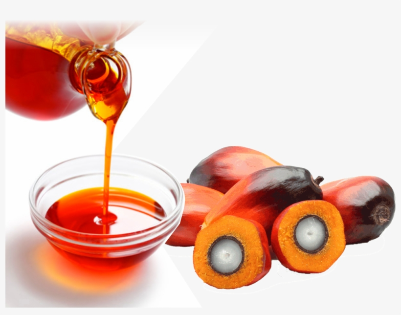 Home/vegetable Oils/rdb Palm Oil - Palm Oil Images Transparent, transparent png #506283