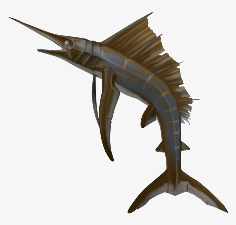 Sailfish Detail - Sailfish Runescape - Free Transparent PNG Download