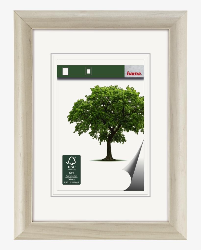 """rhön"" Wooden Frame, White, 20 X 30 Cm - Hama Holzrahmen Rhön, Weiß, 30 X 40 Cm, transparent png #5074245"