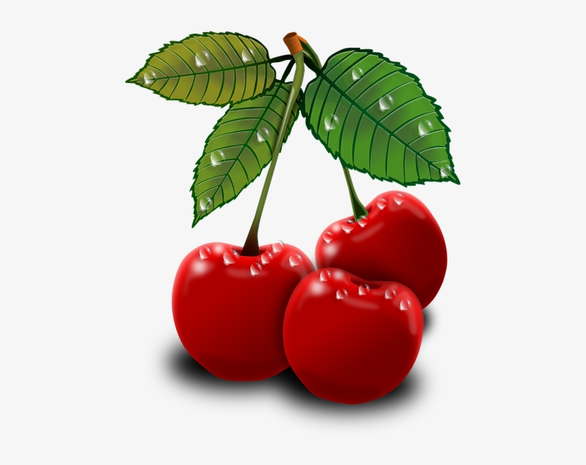 Read It - Art Cherry Png, transparent png #510342