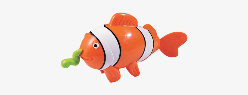 Swimming Clown Fish - Tigex Swimming Clown Fish And 10 Months, transparent png #517895