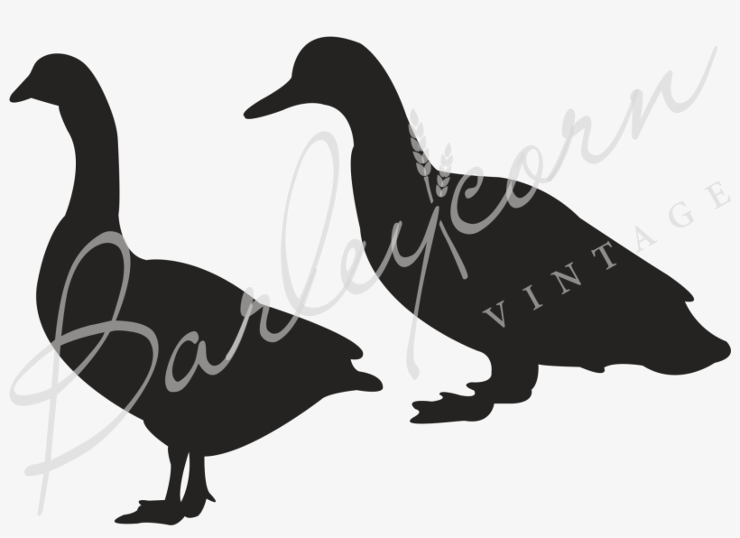 Decals Stickers Size: 5 X 4 Inches Black, transparent png #5103551