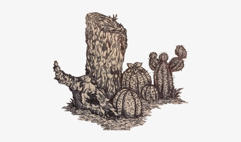 Welp, Here's The Same Desert Tree Stump, But Now It - Tree Stump, transparent png #520541