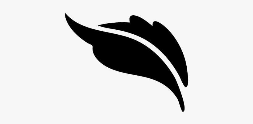 Plant Leaf Shape Vector - Free Leaf Shapes Png, transparent png #525031