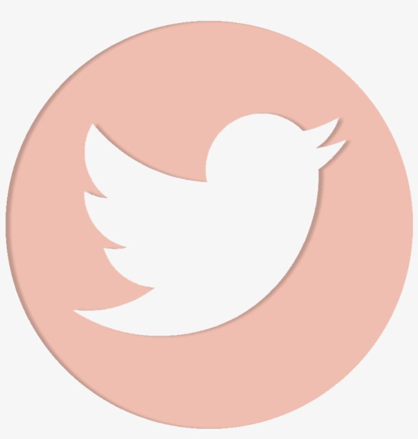 Social Media - Transparent Twitter Logo Png, transparent png #531219