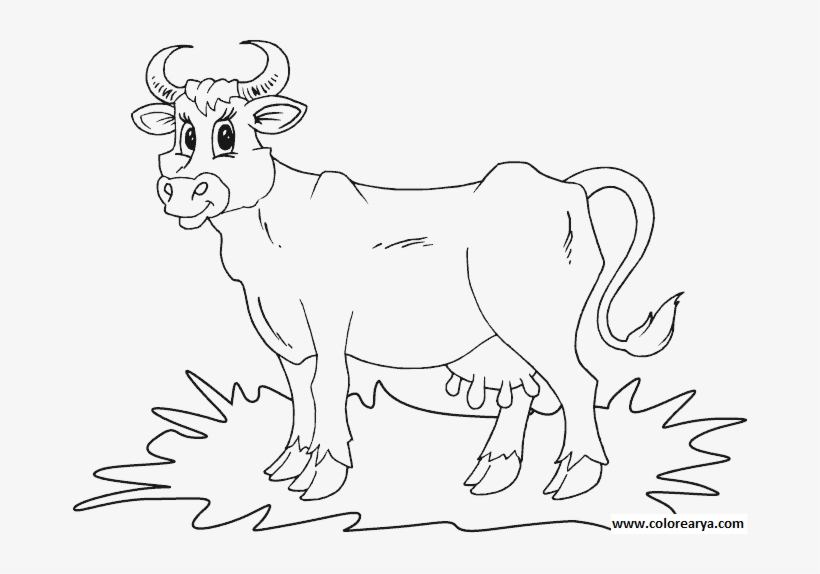 Colorear Vaca Vacas Para Colorear Free Transparent Png Download