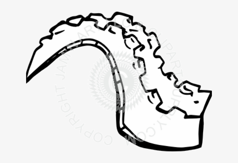 Tail Clipart Alligator