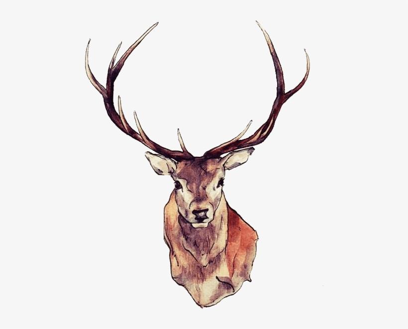 Deer Face - Deer Temporary Tattoos Tattoo Sticker, transparent png #540641