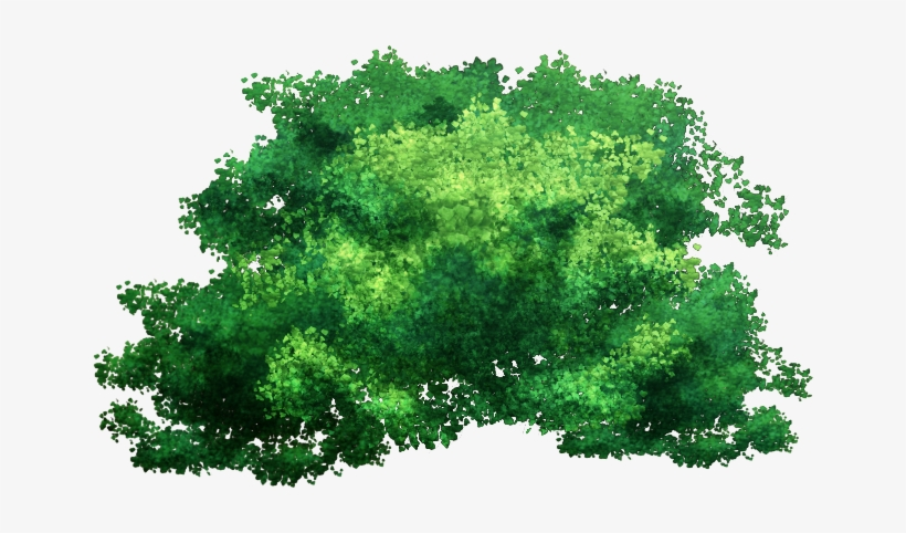 Tree Top Png Png - Jungle Terrain Wargaming - Free Transparent PNG