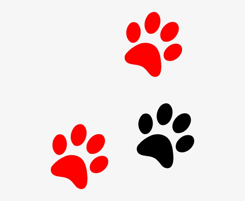 Tiger Paw Template Printable Red Lion Paw Print Free Transparent Png Download Pngkey The paw print started as a plaster cast made of a tiger's paw at the museum of natural history in chicago. tiger paw template printable red lion